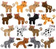逗人喜爱和嬉戏的猫的传染媒介汇集 库存图片