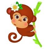 逗人喜爱在白色背景隔绝的竹子茎的一点猴子 异乎寻常的动物 欢乐海报,党剪影  皇族释放例证