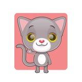 逗人喜爱灰色猫挥动 库存照片