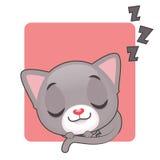 逗人喜爱灰色猫睡觉 免版税库存照片