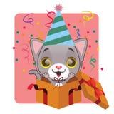 逗人喜爱猫庆祝 免版税库存图片