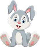 逗人喜爱的一点兔宝宝动画片开会 免版税库存照片