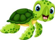 逗人喜爱的乌龟动画片的传染媒介例证 库存照片