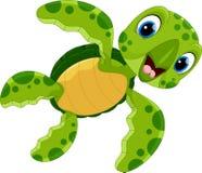 逗人喜爱的乌龟动画片的传染媒介例证 免版税库存照片