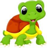 逗人喜爱的乌龟动画片 向量例证