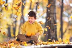 逗人喜爱的五岁男孩获得乐趣在秋天公园 库存照片