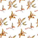逗人喜爱的五颜六色的小的在白色背景的叶子无缝的样式织品的,纺织品,纹理,包装纸,墙纸 免版税图库摄影