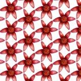 逗人喜爱的五颜六色的小的在白色背景的花无缝的样式织品的,纺织品,纹理,包装纸 库存图片