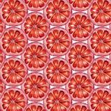 逗人喜爱的五颜六色的红色橙色在白色背景的和平无缝的样式织品的,纺织品,纹理,包装纸 免版税图库摄影