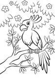 逗人喜爱的亲切的鹦鹉坐开花的树在森林里 免版税库存图片