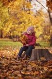 逗人喜爱的儿童女孩坐与秋叶花束的木日志 免版税库存照片