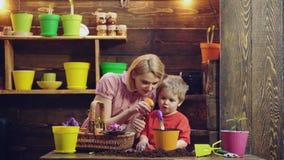 逗人喜爱的儿童男孩帮助他的母亲喜欢植物 和她的儿子参与从事园艺母亲在后院 春天 影视素材