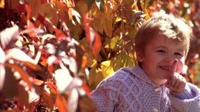 逗人喜爱的儿童男孩获得乐趣在秋天公园 等待在秋天公园 可爱的小孩女孩画象在美好的秋天天 股票录像