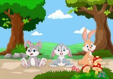 逗人喜爱的兔子动画片 库存照片