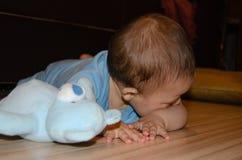 逗人喜爱的六个月使用与蓝色女用连杉衬裤的男婴涉及地板,长牙齿和早期的发展概念 库存图片