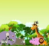 逗人喜爱的动物动画片有热带森林背景 库存图片