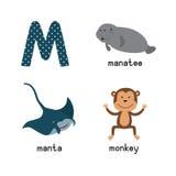 逗人喜爱的动物园字母表 Alphabet.m letter.mushroom月亮老鼠魔术猴子 滑稽的动画片动物:海牛,女用披巾,猴子 库存照片