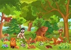 逗人喜爱的动物在森林里 免版税库存图片