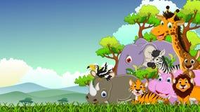 逗人喜爱的动物野生生物动画片有森林背景 免版税库存图片