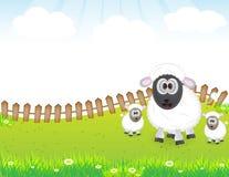逗人喜爱的动物绵羊家庭 向量例证