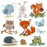 逗人喜爱的动画片森林动物传染媒介 免版税图库摄影