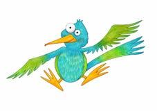 逗人喜爱的动画片蜂鸟 库存照片