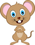 逗人喜爱的动画片传染媒介老鼠 库存照片