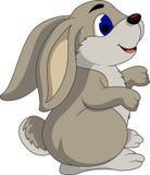 逗人喜爱的动画片兔子 库存照片