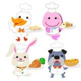 逗人喜爱的动画片动物厨师收藏 库存照片
