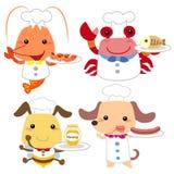 逗人喜爱的动画片动物厨师收藏 库存图片