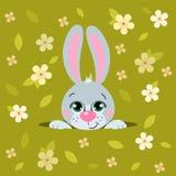 逗人喜爱的动画片复活节兔子 适用于复活节设计 库存照片