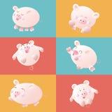 逗人喜爱的动画片猪,传染媒介例证 免版税库存照片