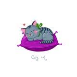 逗人喜爱的动画片镶边了在一个紫色坐垫的灰色猫 免版税库存照片