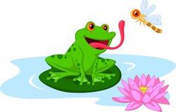 逗人喜爱的动画片青蛙传染性的蜻蜓 库存图片