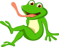 逗人喜爱的动画片青蛙开会 免版税库存图片