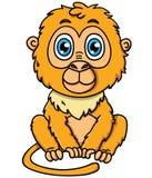 逗人喜爱的动画片绢毛猴猴子 库存照片