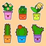 逗人喜爱的动画片kawaii套植物、仙人掌多汁植物和花与滑稽的面孔平的设计传染媒介 库存图片
