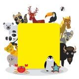 逗人喜爱的动画片动物设置了toucan鹿浣熊马狼北美野牛企鹅海星螃蟹封印豹子熊猫北极熊,在白色的框架 库存照片