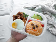 逗人喜爱的午餐盒集合 库存图片