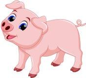 逗人喜爱的厨师猪动画片 免版税库存照片