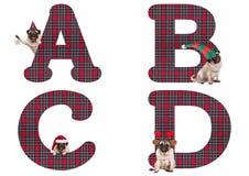 逗人喜爱的圣诞节哈巴狗小狗字母表在A B C D上写字 图库摄影