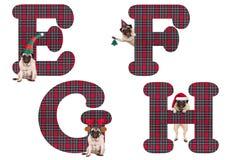 逗人喜爱的圣诞节哈巴狗小狗字母表在E-F G H上写字 免版税库存图片