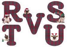逗人喜爱的圣诞节哈巴狗小狗字母表在R S T U v上写字 图库摄影