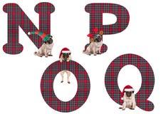 逗人喜爱的圣诞节哈巴狗小狗字母表字母N P O Q 免版税库存图片
