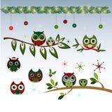 逗人喜爱的圣诞节猫头鹰传染媒介Clipart 免版税库存照片
