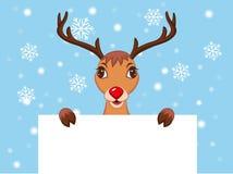 逗人喜爱的圣诞节驯鹿 库存照片