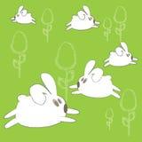 逗人喜爱的复活节兔子 图库摄影