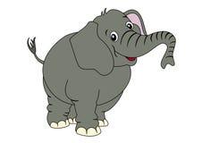 逗人喜爱的大象 免版税库存照片