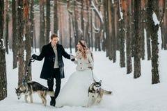 逗人喜爱的夫妇在足迹走在有两条西伯利亚狗的多雪的森林里 户外婚姻冬天的新娘新郎 附庸风雅 库存图片