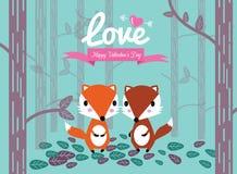 逗人喜爱的夫妇狐狸在森林里。 免版税库存照片